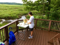 My first stop of the day was the observation deck on Trail 2 overlooking wetlands where the Tippecanoe and Wabash Rivers connect. Since there was plenty of space on a level surface, I used a folding table at its highest height setting to spread out my art supplies.